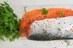 Due Salmon Fillets con le erbe Immagini Stock Libere da Diritti