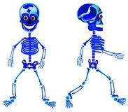 Due scheletri ambulanti Fotografia Stock