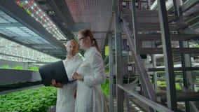 Due scienziati con un computer portatile nelle mani degli uomini e delle donne che discutono i risultati di ricerca biologica su  stock footage