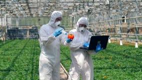 Due scienziati stanno pompando le verdure con i prodotti chimici video d archivio