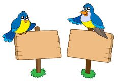 Due segni di legno con gli uccelli Immagine Stock
