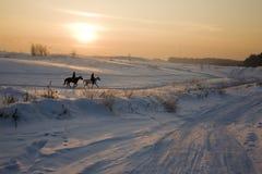 Due siluette dei cavalli su neve nell'inverno Immagini Stock