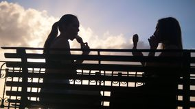 Due siluette delle giovani donne che si siedono sulla banchina e che mangiano il gelato - l'assaggio ogni altri il gelato stock footage