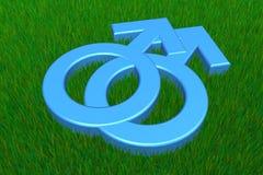 Due simboli maschii blu su erba Fotografie Stock Libere da Diritti