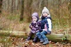 Due sorelle che si siedono su un albero Fotografie Stock Libere da Diritti
