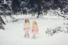 Due sorelline adorabili divertenti fotografia stock libera da diritti