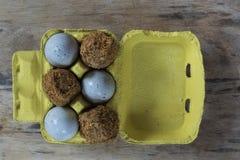 Due specie differenti delle uova di secolo in un vassoio d'annata giallo del cartone su un bordo di legno immagine stock