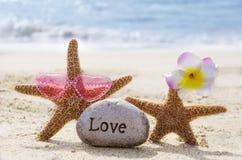 Due stelle marine con roccia sulla spiaggia Fotografia Stock