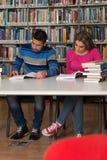 Due studenti di college in libri di lettura delle biblioteche Immagini Stock Libere da Diritti