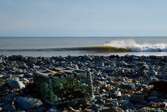 Due surfisti che aspettano foregro astratto del bohkeh delle onde di acqua fredda Immagine Stock Libera da Diritti