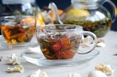 Due tazze di vetro del tè verde Fotografia Stock