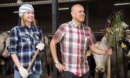 Due tecnici che posano vicino al cowhouse in azienda agricola moderna Immagine Stock