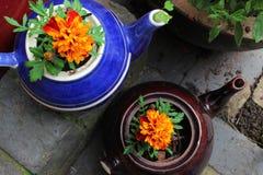 Due teiere riciclate Fotografia Stock