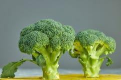 Due teste di insalata sana Broccolo verde fresco vista orizzontale del fiore di verdure verde Dieta sana Primo piano del cavolo v immagini stock libere da diritti