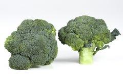 Due teste mature fresche dei broccoli fotografia stock
