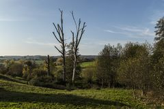 Autumn landscape in evening light in the hills of South Limburg, the Netherlands stock photography