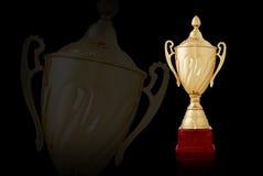 Due trofei dorati brillanti, su fondo nero illustrazione di stock