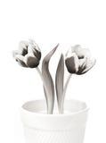 Due tulipani della sorgente Fotografia Stock