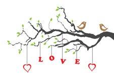 Due uccelli di amore ed alberi di amore Fotografie Stock