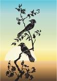 Due uccelli nell'albero Fotografie Stock Libere da Diritti