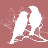 Due uccelli su una filiale Illustrazione di vettore Illustrazione Vettoriale