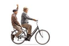Due uomini anziani allegri che guidano insieme una bicicletta immagini stock