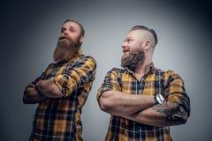 Due uomini barbuti divertenti si sono vestiti in una camicia di plaid che posa sulle sedere grige Immagini Stock