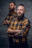 Due uomini barbuti in una camicia di plaid Immagine Stock