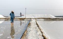 Due uomini che lavorano a Hon Khoi salano i campi in Nha Trang, Vietna immagini stock
