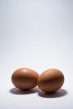 Due uova Fotografie Stock Libere da Diritti