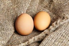 Due uova marroni del pollo dentro su struttura della tela di sacco fotografia stock libera da diritti