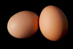 Due uova marroni sul nero Immagine Stock