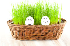 Due uova sorridenti divertenti della donna   Immagini Stock Libere da Diritti
