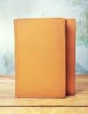 Due vecchi libri Fotografia Stock