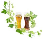 Due vetri dei rami di luppolo e della birra su fondo leggero Immagini Stock