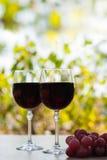 Due vetri del vino rosso sulla superficie rustica di legno Fotografia Stock