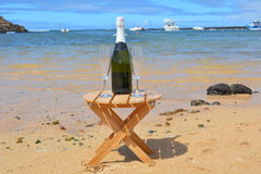 Due vetri dell'isola di Champagne And Bottle In Paradise Immagine Stock