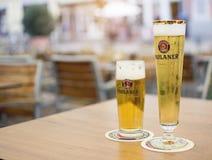 Due vetri della birra del tedesco di Paulaner Immagine Stock Libera da Diritti