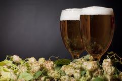 Due vetri della birra schiumano con il luppolo Immagini Stock Libere da Diritti
