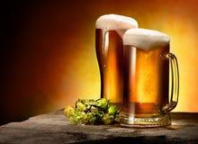 Due vetri di birra e del luppolo Fotografia Stock