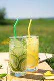 Due vetri di limonata e di calce all'aperto Immagini Stock