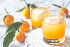 Due vetri di succo d'arancia Fotografia Stock Libera da Diritti