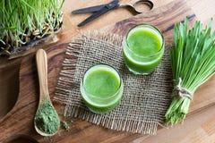 Due vetri di succo verde con l'erba di orzo appena raccolta Fotografie Stock Libere da Diritti