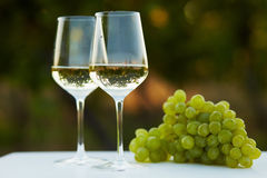 Due vetri di vino bianco Fotografia Stock Libera da Diritti