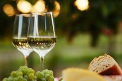 Due vetri di vino bianco con alimento Immagine Stock Libera da Diritti