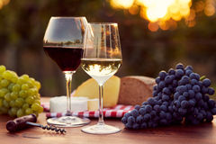 Due vetri di vino rosso bianco e Immagini Stock