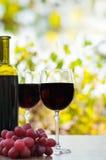 Due vetri e la bottiglia del vino rosso su legno rustico sorgono Immagini Stock