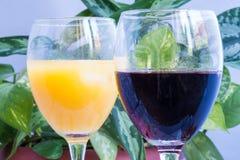 Due vetri - vino rosso e succo freddo Fotografia Stock Libera da Diritti
