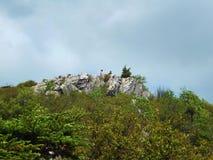 Due viandanti su Wilburn Ridge fotografia stock libera da diritti