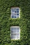 Due Windows Fotografia Stock Libera da Diritti